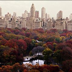 fall in New York City. Oh how I love Central Park and NYC! Nyc Fall, Autumn In New York, Nyc In The Fall, Autumn Fall, Autumn Leaves, Oh The Places You'll Go, Places To Travel, Places To Visit, Travel Destinations