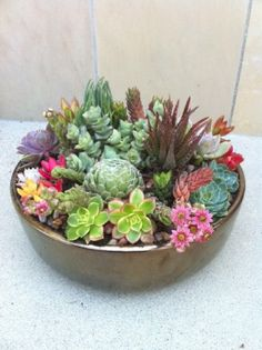 Simply Succulent Plant Designs- Los Angeles, Orange County. Gorgeous