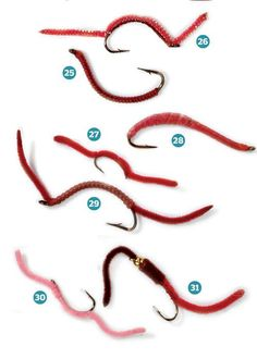 Build the Ultimate Tackle Box   Outdoor Life Don't forget the power of the San Juan worm!