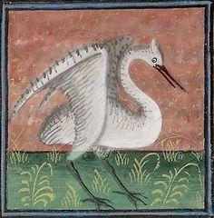 Stork : Physiologus : Ana Stoykova : Medieval Literature