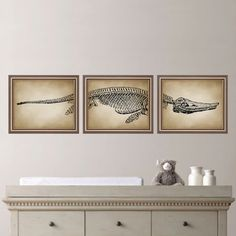Dinosaur Fossil Art:    This is a three-print set, featuring a dinosaur fossil spanning three prints. The background is a vintage-inspired,