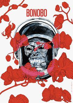 """""""Bonobo"""" by Maciek Wolański"""