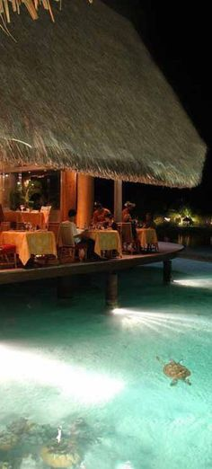 #Le_Meridien_Bora_Bora Hotel #Bora_Bora #French_Polynesia http://en.directrooms.com/hotels/info/5-145-2697-39730/