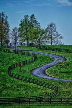 """Kentucky Road"" by John Barrett, via 500px. (near Lexington)"