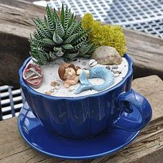 Miniature Teacup Garden.   14 Cute Teacup Mini Gardens Ideas--> http://coolcreativity.com/garden/cute-teacup-mini-gardens-ideas/  #Teapot #Garden #Mini