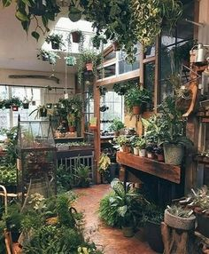 If I had a garden shop behind my house, just like that! The best of home indoor 2017 - garden design - If I had a garden shop behind my house, just like that! Best of Home Indoor - Garden Shop, Home And Garden, Garden Living, Garden Art, Glass House Garden, Glass Green House, Garden Homes, Pink Garden, Balcony Garden