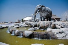 New Dubai Safari Park in final stages before 2017 opening