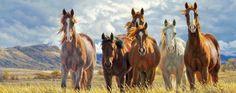 imagenes-de-caballos-pintados-al-oleo