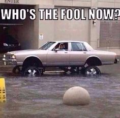 Who's the fool now, hilarious and fitting for those in az today lol