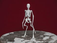 Harpy Skeleton 3D Print Taxidermy Sculpture by MythicArticulations