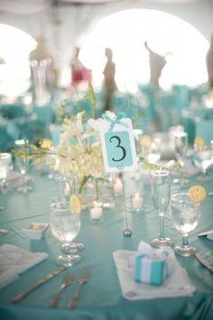 Aqua Blue Maryland Wedding Meaghan Elliot Photography 275x413 Chesapeake Bay Wedding Reception: Kelly + Robert