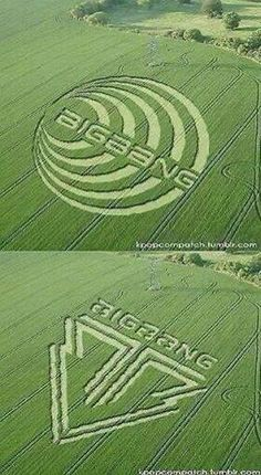 BigBang, kpop, best crop circles I have seen. Daesung, Tvxq, Btob, Big Bang Kpop, Bang Bang, G Dragon Top, Cn Blue, Ft Island, Ailee