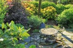1000 Images About Pacific Northwest Gardening On
