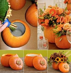 To make a pumpkin flower vase you must make a gap within the higher a part of the pumpkin with a can. After that take away the seeds and place the can within the gap. Then put flowers within the can. Your pumpkin vase is prepared. Pumpkin vase may also … Pumpkin Planter, Pumpkin Vase, Pumpkin Flower, Pumpkin Centerpieces, Thanksgiving Centerpieces, Diy Pumpkin, Pumpkin Carving, Wedding Centerpieces, Pumpkin Bouquet