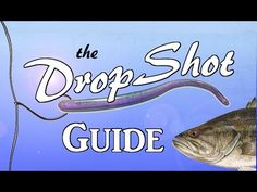 DROPSHOT Guide - The Most Effective Rig in Bass Fishing - YouTube