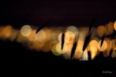 Photo Night lights by Michele Matteo Catanzariti (Dreamsweaver) on 500px