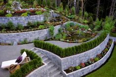 terrraced back yard with curved stone walls built into a slope