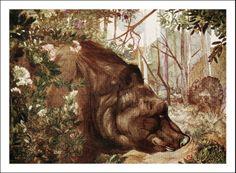 The Jungle Book (1908)7 - Edward Julius Detmold
