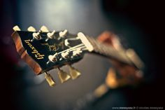 Best Acoustic Guitar, Guitar Art, Journal Photo, Guitar Photos, Gibson Guitars, Wonderful Picture, Gibson Les Paul, Single Image, One Pic