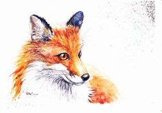 NEW Print of Original Watercolour Painting by Be Coventry,Realism, Fox