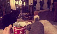 #Cosy #home #winter #cat