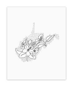 West Virginia - Archival Print. WEST VIRGINIA + RHODODENDRON This 8x10 inch piece is a part of Anna's State Flower series of artwork in which she drew each state made up of its state flower. It is printed with archival pigment inks on heavyweight, ultra-smooth paper with a matte finish. These high-quality materials create a rich and vibrant print that will last for years and years to come. Signed on the back. It is packed in a cello sleeve and mailed in a rigid mailer to ensure that it...