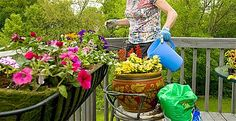 8 tips for landscaping on the cheap
