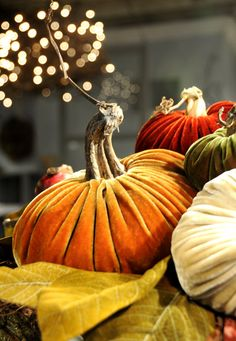 Love these velvet pumpkins with real stems! They are beautiful!!...#BHGREParty