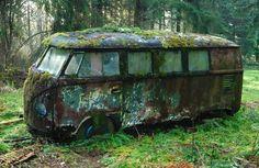 mossy-vw-bus.jpg