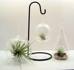 Colgantes cristal terrario o sostenedor del por FlathersCreations