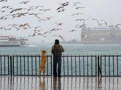 Kadikoy Istanbul a man and his dog!
