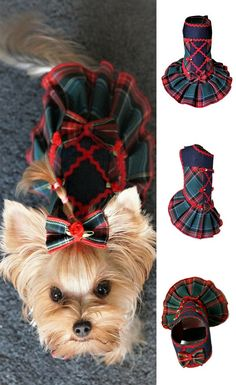 Cute dress for small dog can see my clothes store in Etsy. This a puppy girl dresses.