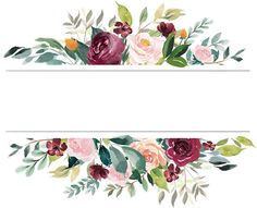 West Chicago Florist Flower Delivery By The Fl Market Flower Wallpaper, Wallpaper Backgrounds, Iphone Wallpaper, Vintage Flower Backgrounds, Vegetal Concept, Watercolor Flowers, Watercolor Paintings, Floral Drawing, Floral Border