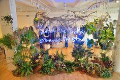 Satoshi Kawamoto, creative director of Green Fingers Cool Store, Store Image, Creative Company, Cafe Design, Retail Design, Graphic Design Inspiration, Decoration, Creative Director, Indoor Plants