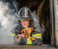 Good cause: Charleston Animal Society released the calendar in association with The Fire D...