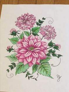 My Colouring Of Flowers Using Prisma Premier Pencils