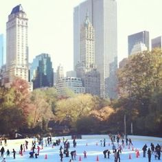 Ice skating in Central Park.  Loved watching the skaters at Wolman Rink when I lived there.  My children loved it, too.