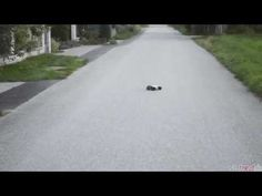 Video: Carrera RC – Buggy Dark Pirat (162047) - Erste Fahrtests - YouTube