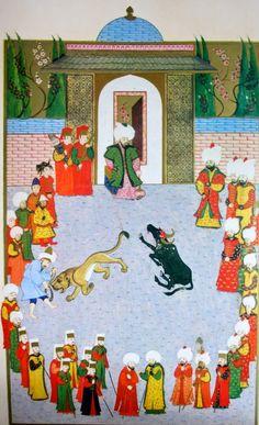"""Hünername'den Ali Çelebi  çizimi ile """" 2. Bayezid  huzurunda Tunus sultanının hediye ettiği bir arslan ile su sığırının mücadelesi ve sul..."""