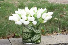 Modern Tulips | Clean and modern - tulips with a tropical ca… | Flickr