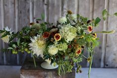 "Hydrangea 'Limelight"", crabapples, oregano flowers, green beans, scabies pods, celosia, dahlias, zinnias 'persian carpet', blackberries, sanguisorba, maple seed pods, bush honeysuckle foliage"