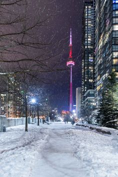 Hi i'm Tina a 21 year old bisexual girl from Toronto ,Canada. I grew up as a tomboy and in. Toronto Snow, Toronto Winter, Visit Toronto, Toronto Ontario Canada, Toronto City, Downtown Toronto, Toronto Skyline, Toronto Photography, City Wallpaper