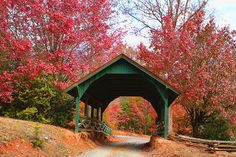 Fall in Blue Ridge - I've never been there in the Fall..this inspires me to go!