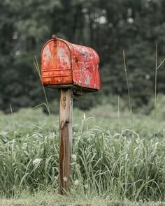 Country Mailbox, Old Mailbox, Rural Mailbox, Vintage Mailbox, Mailbox Post, Large Mailbox, Country Charm, Country Life, Country Living