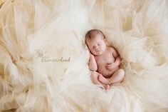 newborn baby with mother's wedding dress Nine Day Old Baby V : Kennewick West Richland Newborn Photography » Summerland Photography