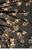 Crystal Globe Willow LED  Lighted Branches  (7 branches )  $24 Plug In