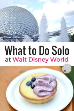 Solo at Walt Disney World? Check out these tips and ideas on how to rekindle the magic while alone at Disney. What to do alone at Walt Disney World. Disney World Florida, Walt Disney World Vacations, Disney Parks, Disney Bound, Florida Travel, Disney World With Toddlers, Disney With A Toddler, Disney World Tips And Tricks, Disney Tips