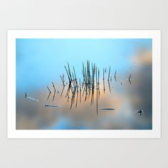 Pinchos Art Print by Guido Montañés - $20.00