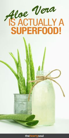 Why Egyptians called Aloe Vera the plant of immortality. I use it on my skin and… – Aloe Vera Nutrition Tips, Health And Nutrition, Health And Wellness, Fruit Nutrition, Nutrition Products, Sports Nutrition, Health And Fitness Tips, Health Advice, Aloe Vera