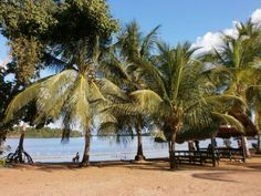 - Suriname